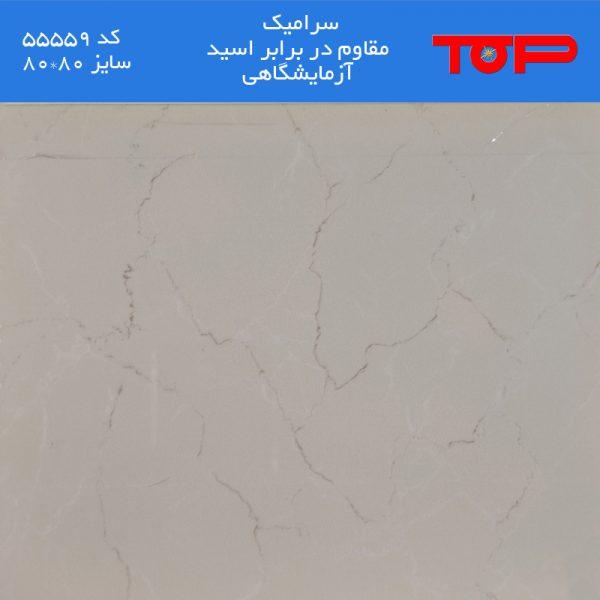 سرامیک مقاوم در برابر اسید آزمایشگاهی - کد 55559